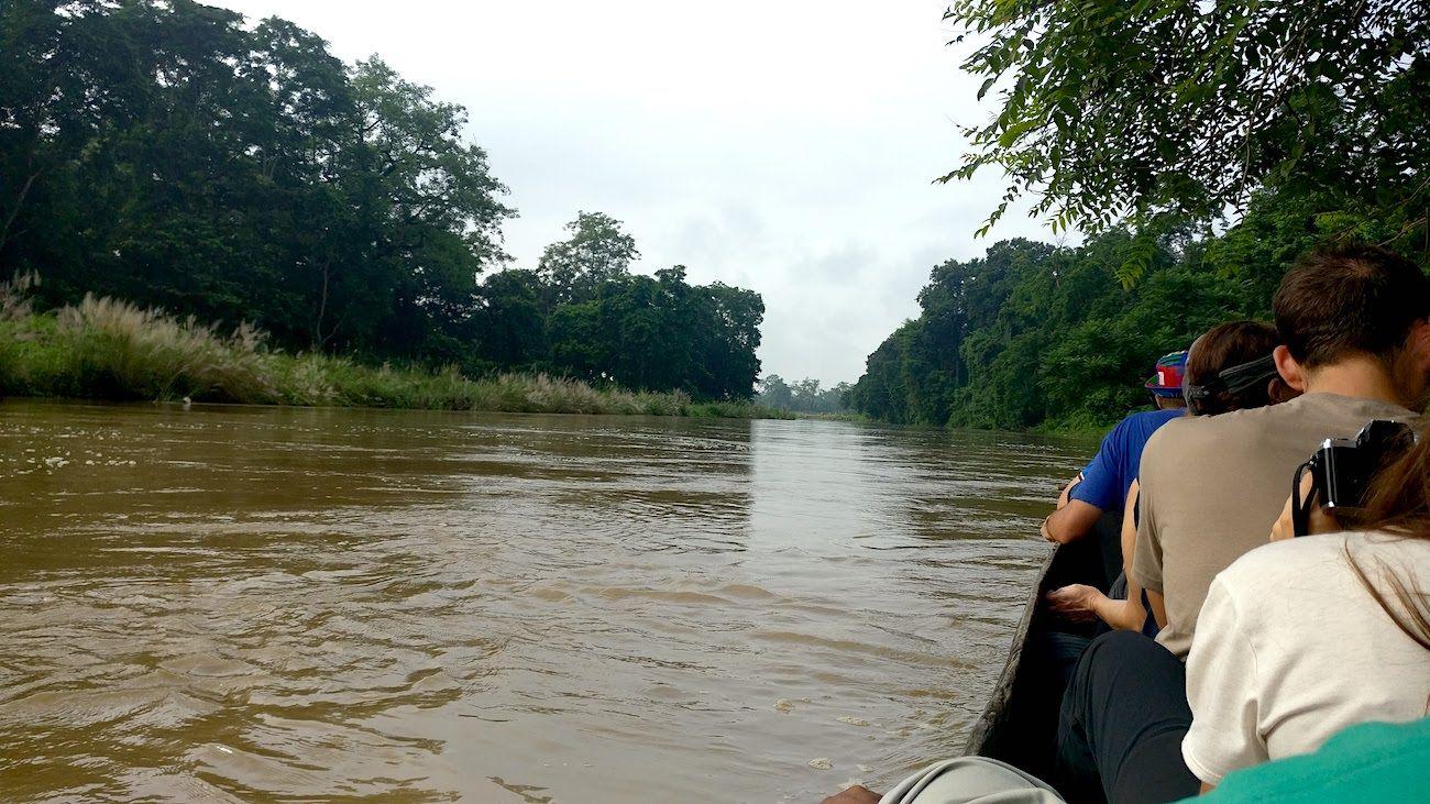 Boating on Jungle Safari